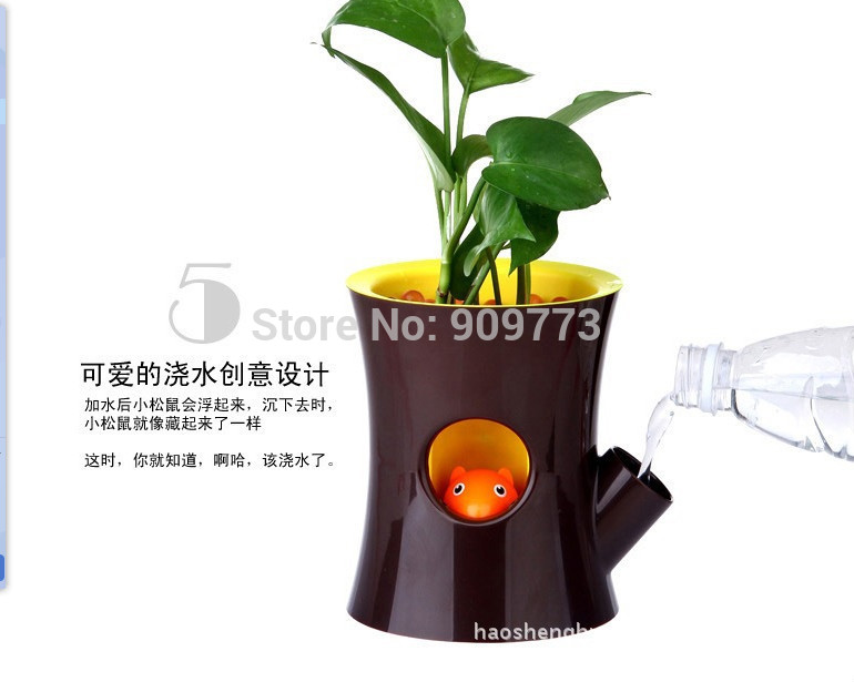 Online Get Cheap Orchid Pots Aliexpress Com Alibaba Group