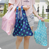 High Quality Reusable Grocery Bag, Promotion Nylon Foldable Shopping Bag