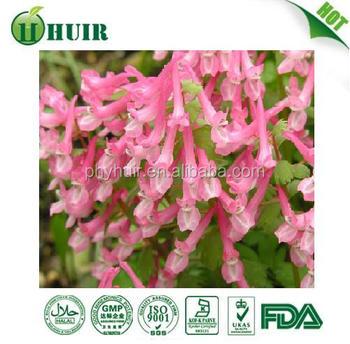 GMP factory Yanhusuo Extract corydalis yanhusuo extract Rotundine