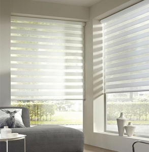 2010 wholesale oem roller window fabric blinds zebra day night