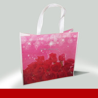 Promotion colorful shopping bags 100% manufacturer