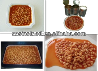Wholesale canned white kidney beans in tomato sauce china