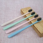 small head toothbrush with charcoal filament and biodegradable handle for korea market