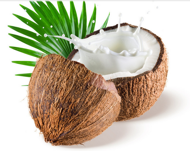 coconut cocos nucifera water an alternative The coconut, cocos nucifera l,  antitumoral alternative for oral  coconut water has a high level of sugar & other salts that.