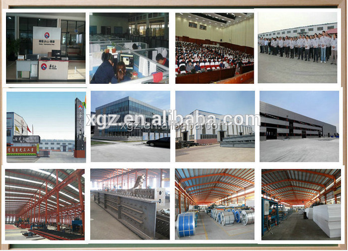 Automatic layer chicken battery cage, Layer poultry farm house design