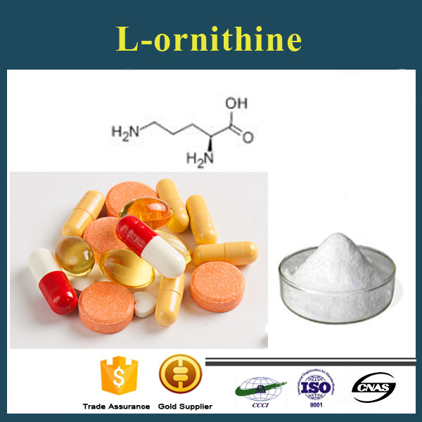 The best ornithine powder /L-Ornithine hcl/CAS:70-26-8