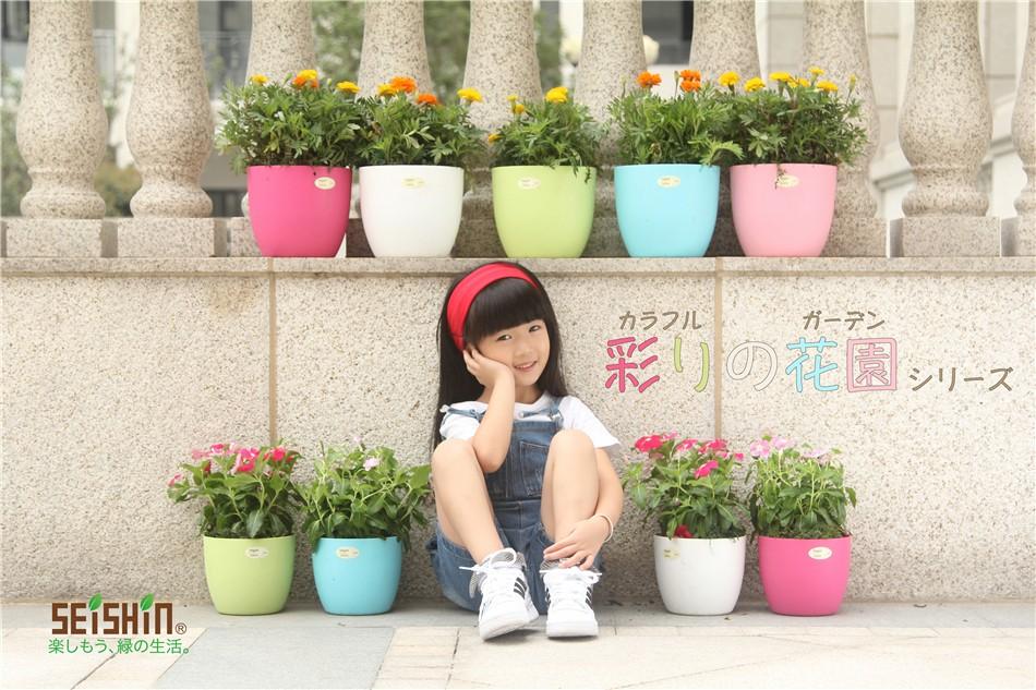 Beautiful self watering fancy plastic flower pots for Fancy flower pots