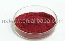 natural hibiscus flower extract powder 25% anthocyanidin