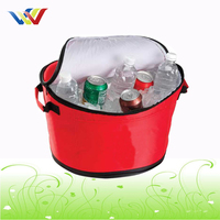 Customized Picnic Cooler Bag For Beer Cans