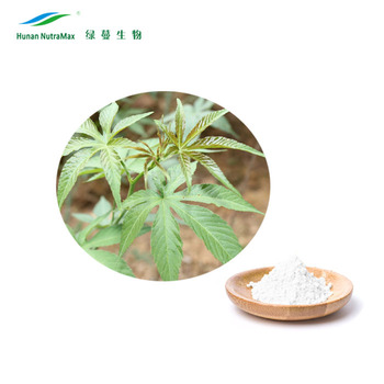 NON-GMO Sweet Blackberry Leaves Extract 70% 85% Rubusoside Powder