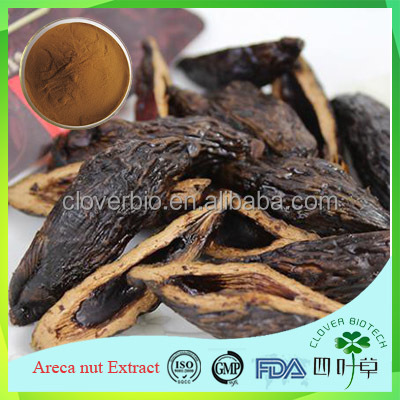 100% natural Areca nut extract, Areca nut powder, Areca nut P.E