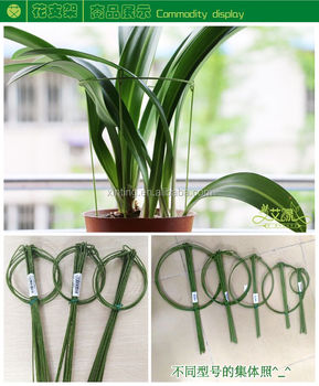 Circular Plant Support For Climbing Plants