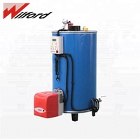 Good quality low pressure domestic natural gas fired hot water boiler