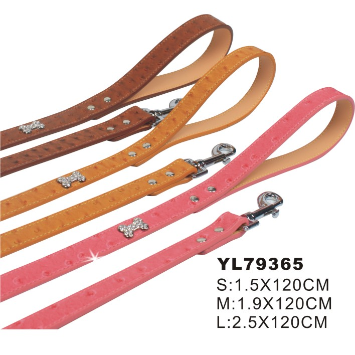 nylon rope dog lead