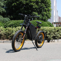 changzhou leili Hot import wholesales high speed Mountain Electric Bike from china for sale 12000w