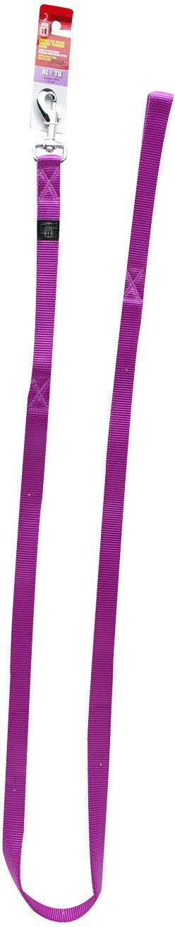 Dogit Nylon Training/Traffic Single Ply Dog Leash with Silver Plate Bolt Snap, X-Large, 1-Inch, Purple