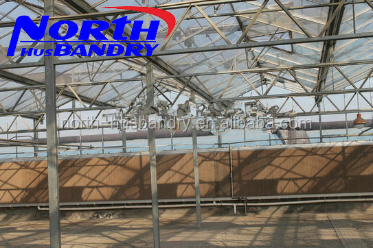 plastic roof greenhouses used greenhouse for sale buy greenhouses for equipment
