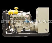 Natural Gas / Propane Standby Generators small power natural gas generator set 30kw