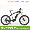 fat bike electric vehicle mountain bike