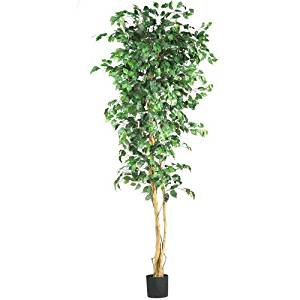 Nearly Natural 5210 Ficus Silk Tree, 7-Feet, Green by Nearly Natural