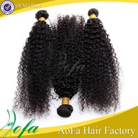 Guangzhou Treasured Recommended Modern Style African American Curly Malaysian Virgin Braiding Hair