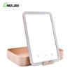 OEM Promotion Custom Compact LED Makeup Vanity Mirror with LED