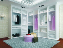 Chinese supplier lasrt free design fancy style pet closet