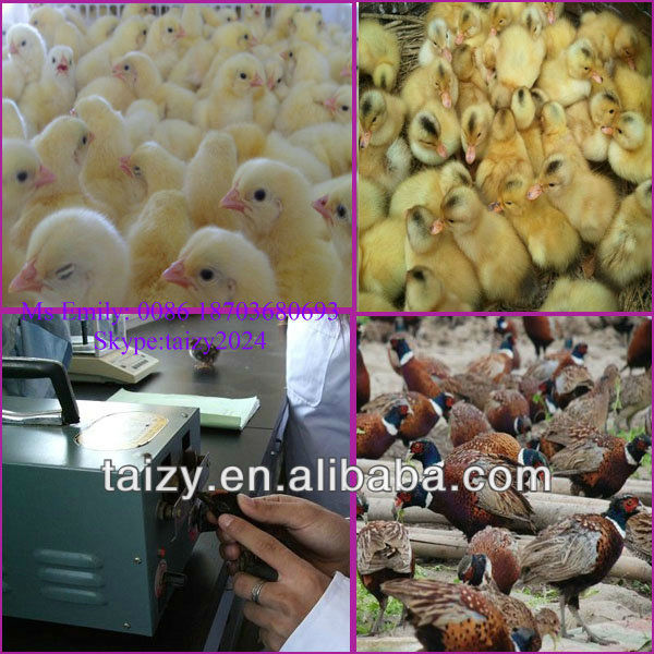 Automatic electric Chicken Debeaking Machine/Poultry beak cutting machine
