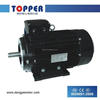 IE2 AsynchronousFRAME 132 3000RPM 1500RPM 1000RPM Electric Motor