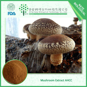 Green health AMAZING OFFER mushroom extract ahcc bulk powder golden suppliers