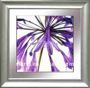 Basit çiçek Fotoğraf Dekoratif Boyama Buy Güzel çiçek Resimleri