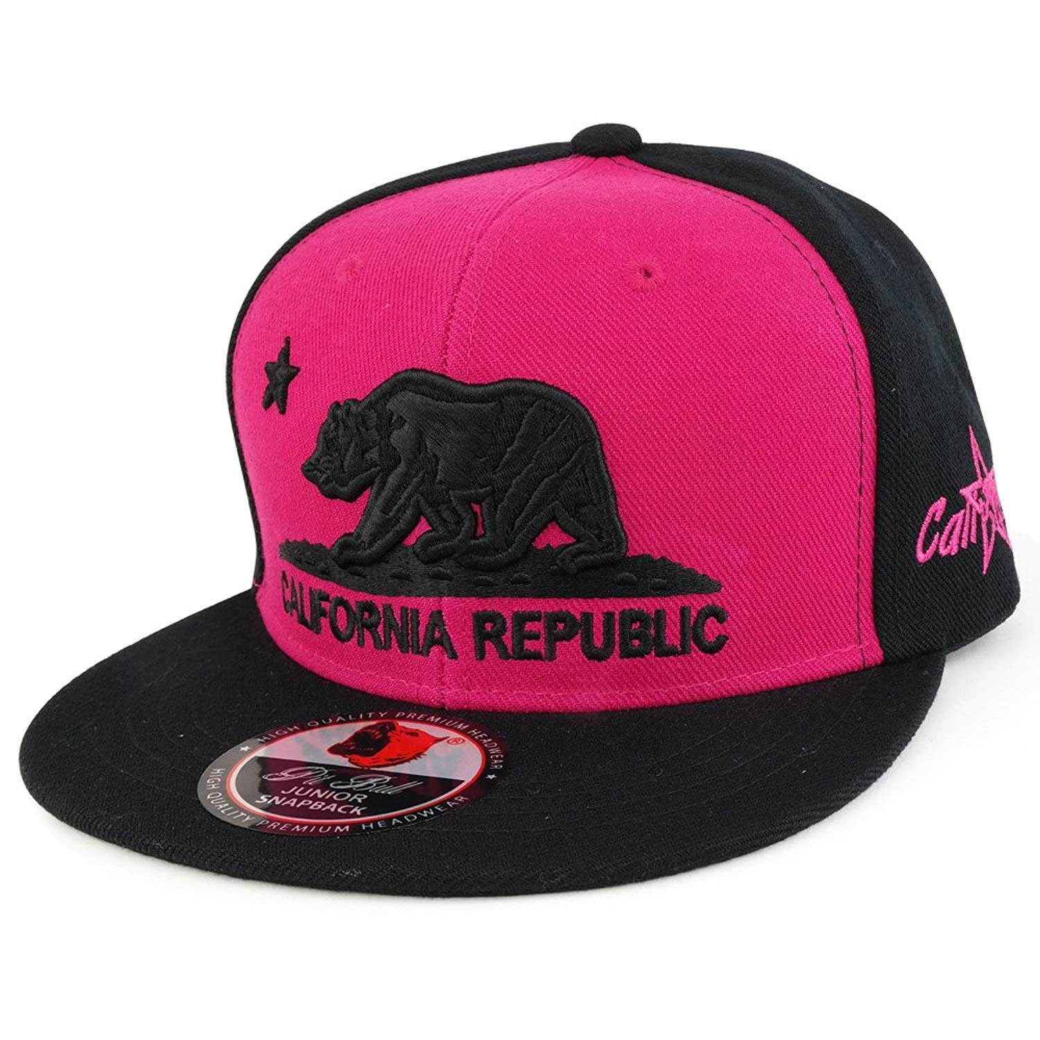 bf25b793382 Get Quotations · Trendy Apparel Shop Kids 3D Embroidered California  Republic Bear Flatbill Snapback Cap