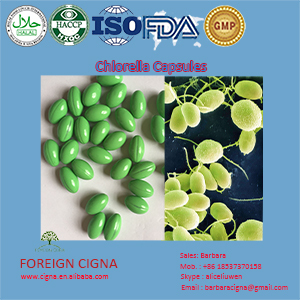 Organic Green Sea Algae Chlorella 500mg OEM Soft gels Capsules