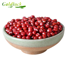 Competitive Price Small Bulk Dark red kidney bean