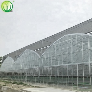 Garden Used Glass Greenhouses For Sale