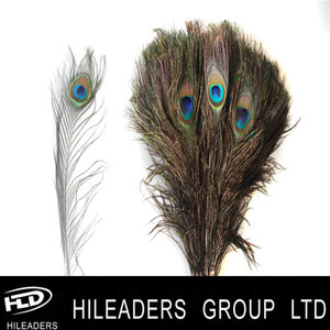 Wholesale Natural Color Peacock Feather With Eye