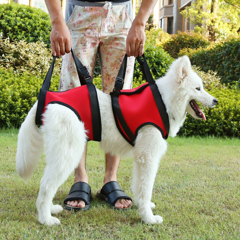 Dog lifts support vest pet help products chien collar leash dog harness with a handle lifting harness for dogs mascotas