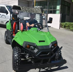 60v 3600w electric offroad dune buggy 4x4