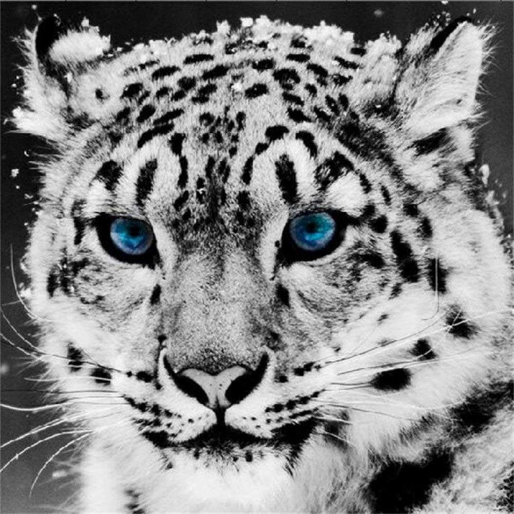 Fairylove 30×40 Diamond Painting Kit Full Leopard Painting with Diamonds Bead Painting Kit Painting Dotz Kit DIY 5D Diamond Art Kits, Snow Leopard