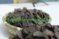 High quality dry anti-cancer wild energy supplement truffle mushroom Best offer service