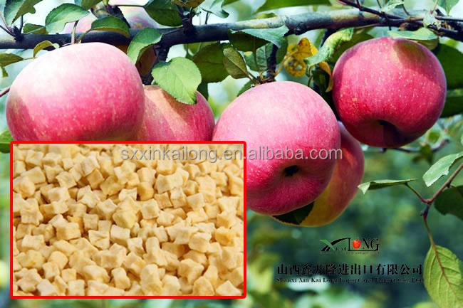 Deep Fried Apple Apple Rings Dried Fruit Bios Chips
