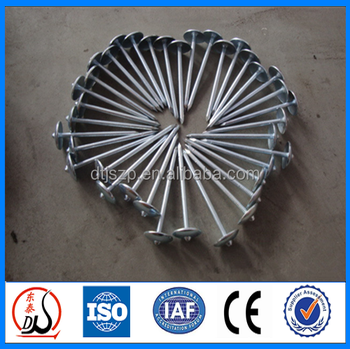 promotion priceumbrella roofing nails for wood product window grill design  sc 1 st  Alibaba & Promotion PriceUmbrella Roofing Nails For Wood Product Window ... memphite.com