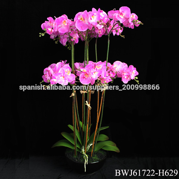 Orquideas gigantes for Orquideas artificiales