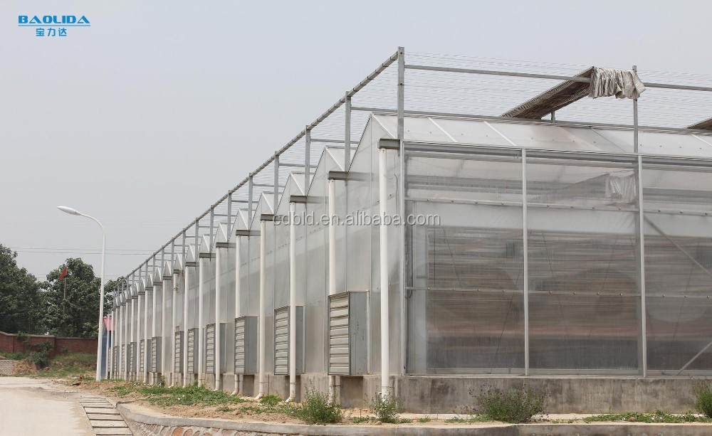 uv Plastic Sheets Greenhouse For Agriculture