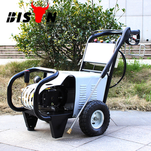 BISON(CHINA) BS3600 3600 PSI Car Washing Machine Electric High Pressure Power Washer 250 Bar