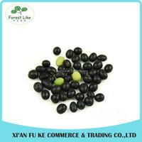 Qinling Mountains Organic Food Dried Legume Crops Black Soy Bean