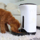 Entirely New Automatic Pet Feeder Automatic Cat Dog Feeder
