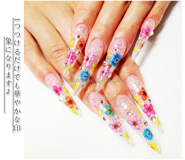 Tszs Brand Summer Design Decoration 12colors Dried Flowers For Nail ...