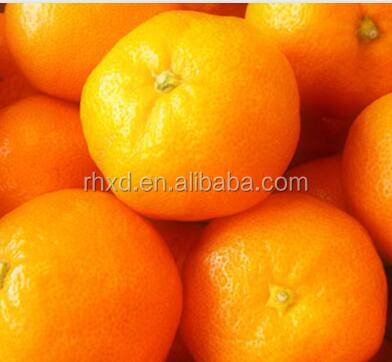 Export oranges of fresh orange prices