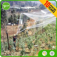 Nylon high quality bird protect net